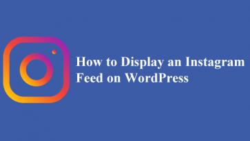 instagram-feed-wordpress