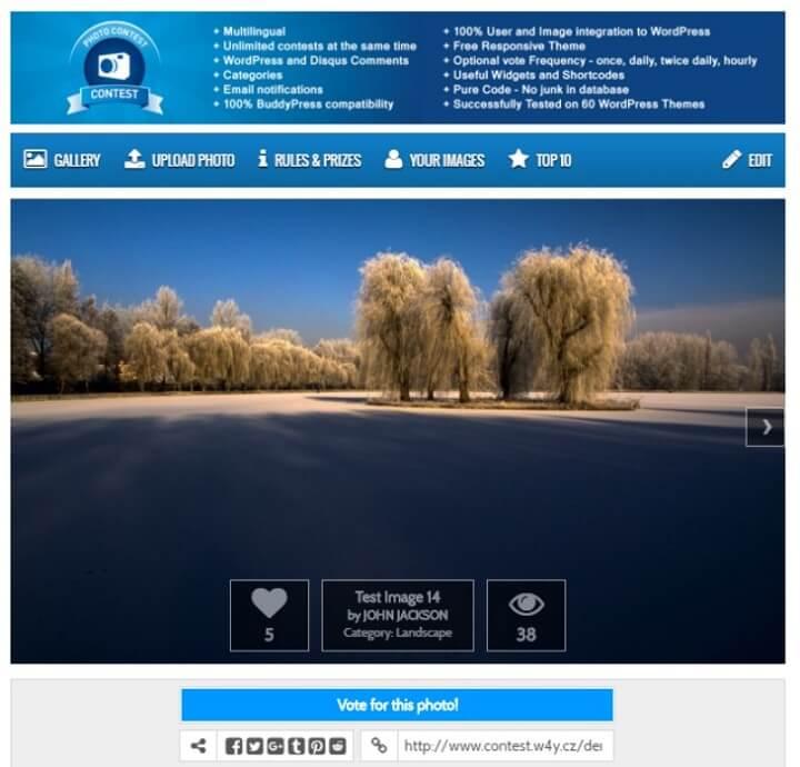 photo contest wordpress plugin example