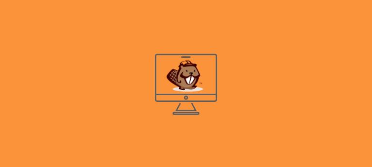 beaver builder plugin examples