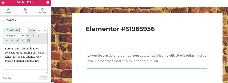 Divi vs Elementor: Elementor text controls